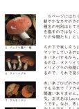画像4: 「わいわいきのこのおいわいかい きのこ解説つき」ISBN9784990703219 (4)