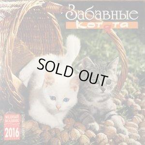 画像1: ロシア子猫カレンダー