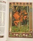 画像4: ロシア絵本・ビリービン画「うるわしのワシリーサ」 (4)