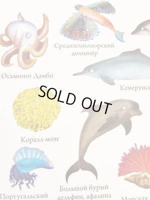 画像4: ロシア絵本「動物図鑑1000」